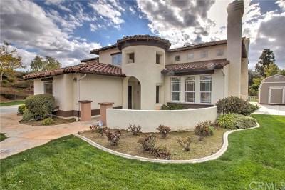 Redlands Single Family Home For Sale: 1709 Allison Way