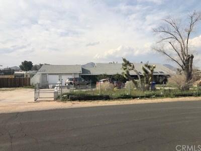 Apple Valley Single Family Home For Sale: 14950 Dakota Road