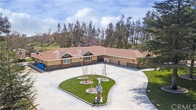 San Bernardino Single Family Home For Sale: 3403 Martin Ranch Road
