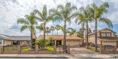 San Bernardino Single Family Home For Sale: 2685 Los Robles Avenue