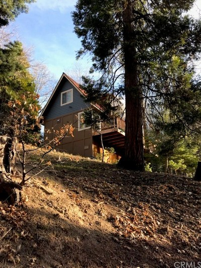 Lake Arrowhead Single Family Home For Sale: 364 Iris Drive