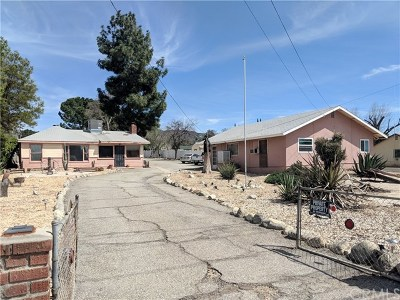 Yucaipa Single Family Home For Sale: 13337 Bryant Street