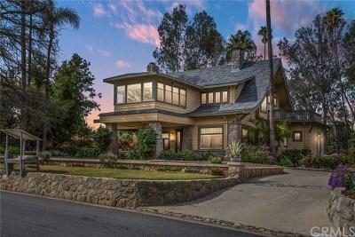 Redlands Single Family Home For Sale: 360 Lakeside Avenue