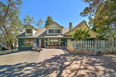 Lake Arrowhead Single Family Home For Sale: 28717 State Hwy 18