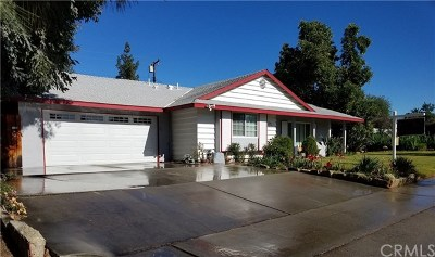 Redlands Single Family Home For Sale: 717 S Grove Street