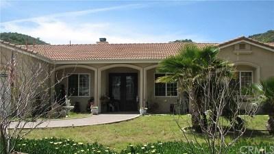 Canyon Lake, Lake Elsinore, Menifee, Murrieta, Temecula, Wildomar, Winchester Rental For Rent: 21075 Indian