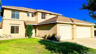 San Bernardino Single Family Home For Sale: 2585 Gray Pine Court