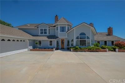 Phelan Single Family Home For Sale: 8219 Arrowhead Road
