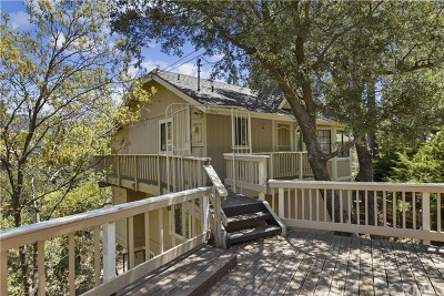 Crestline Single Family Home For Sale: 435 Wylerhorn Drive