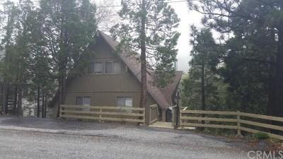 Lake Arrowhead Single Family Home For Sale: 1192 Evergreen Lane