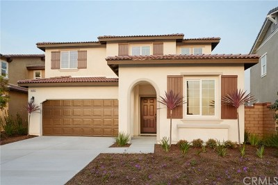 Menifee Single Family Home For Sale: 27300 Allwood Way