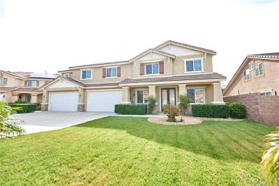 San Bernardino Single Family Home For Sale: 6407 Angels Peak Drive