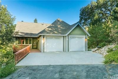Lake Arrowhead Single Family Home For Sale: 1242 Innsbruck Drive