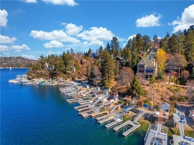 Lake Arrowhead Single Family Home For Sale: 28718 Palisades Drive