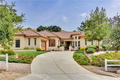 Redlands Single Family Home For Sale: 1061 Sunset Hills Lane
