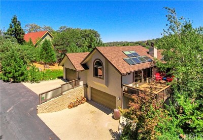 Lake Arrowhead Single Family Home For Sale: 1214 Portillo Drive