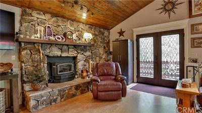 Crestline Single Family Home For Sale: 24866 Valle