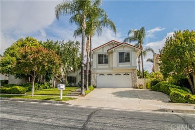 Redlands Single Family Home For Sale: 1746 Sunnypark