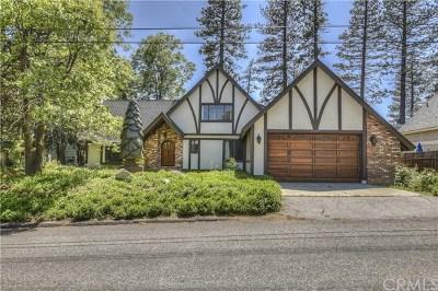 Lake Arrowhead Single Family Home For Sale: 27987 St Bernard