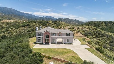 Yucaipa Single Family Home For Sale: 39455 Butterfly Drive Drive