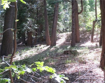 Lake Arrowhead CA Residential Lots & Land For Sale: $55,000