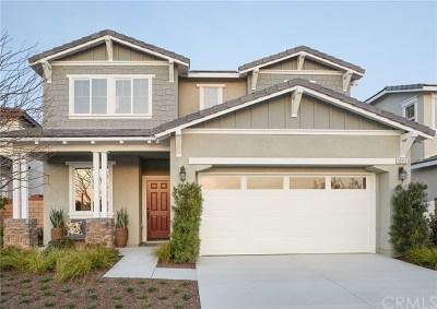 Menifee Single Family Home For Sale: 27276 Allwood Way