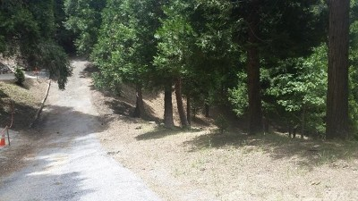 Lake Arrowhead CA Residential Lots & Land For Sale: $60,000