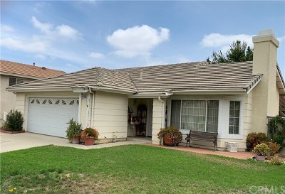 Corona Single Family Home For Sale: 26970 Eagle Run Street