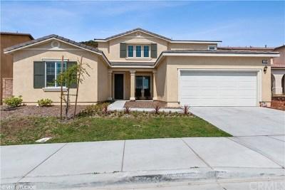 San Bernardino Single Family Home For Sale: 3491 Shadblow Road