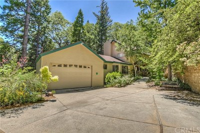Lake Arrowhead Single Family Home For Sale: 176 Hillcrest Court