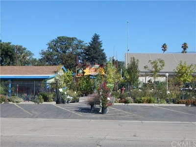 Beaumont Commercial For Sale: 1450 E 6th Street