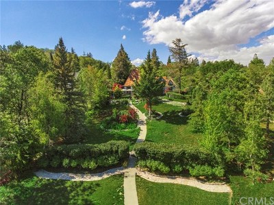 Lake Arrowhead CA Single Family Home For Sale: $2,998,000
