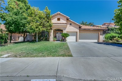 Wildomar Single Family Home For Sale: 35629 Aster Drive