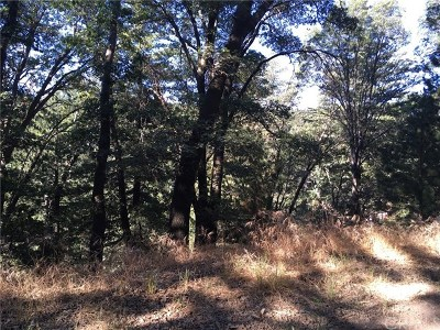 Lake Arrowhead CA Residential Lots & Land For Sale: $26,000