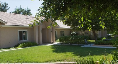 Yucaipa Single Family Home For Sale: 36165 Wildwood Canyon Road
