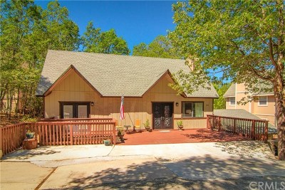 Lake Arrowhead Single Family Home For Sale: 1054 Mallard Drive