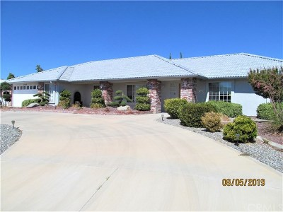 Apple Valley Single Family Home For Sale: 12819 Covey Ct