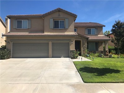 Beaumont Single Family Home For Sale: 34748 Kite Street