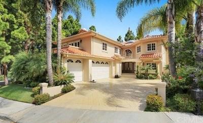Newport Beach Rental For Rent: 1 Canyon Court