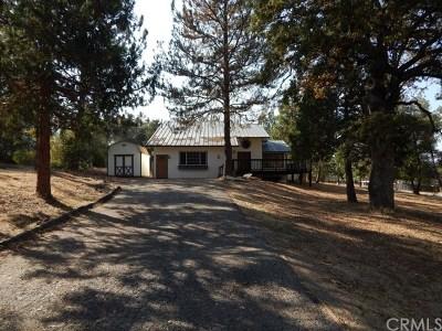 Oakhurst Single Family Home For Sale: 45725 S Oakview Drive