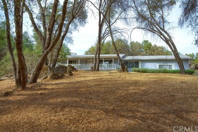 Oakhurst Single Family Home For Sale: 51847 Quail Ridge Road