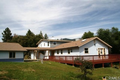 Ahwahnee Single Family Home For Sale: 58569 Road 601