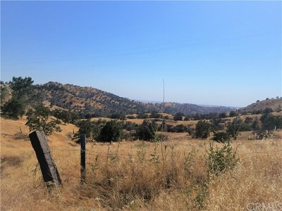 Fresno County Residential Lots & Land For Sale: 1 Sky Harbour Road