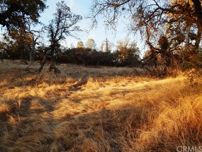 Madera County Residential Lots & Land For Sale: Highway 41