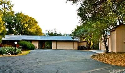 Oakhurst Single Family Home For Sale: 50135 Spook Lane