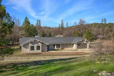 Oakhurst Single Family Home For Sale: 46117 Sutton Drive
