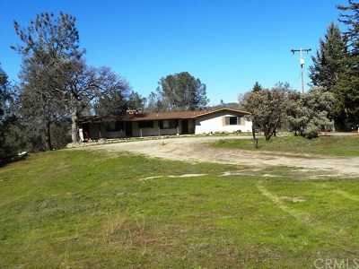 Coarsegold Single Family Home For Sale: 31776 Highway 41