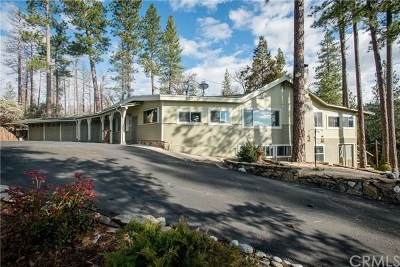 Bass Lake Single Family Home For Sale: 40370 Road 222