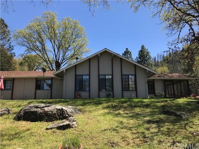 Coarsegold CA Single Family Home For Sale: $489,000