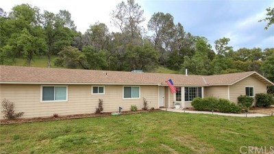 Coarsegold Single Family Home For Sale: 47035 Veater Ranch Road